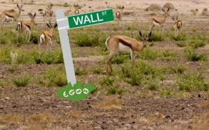 wall_street_africa2-thumb-640xauto-6577