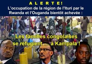 images-visuel_les_familles_congolaises_se_refugient__kampala-880x610